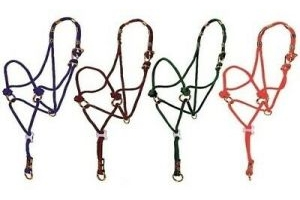 KM Elite Be Nice Halter - Red Tag - Pony - BROWN