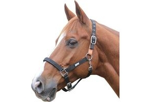 Roma Breakaway Headcollar Black Warmblood