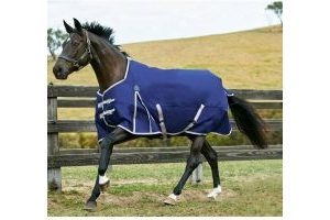 WeatherBeeta ComFiTec Essential 220g Medium Weight Standard Neck Turnout Rug Navy/Red/Silver
