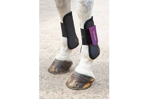 Shires ARMA Tendon Boot Cob Black/Purple