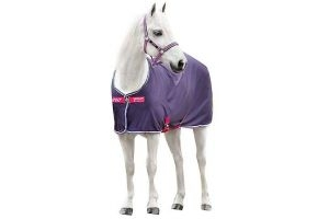 Horseware® Amigo® Pony Jersey Cooler Grape/Pink/White/Powder Blue