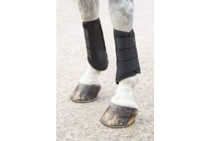 Shires Arma Neoprene Brushing Boots in Black EXTRA Fulll, Black