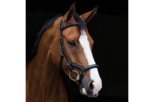 Horseware Rambo Micklem Deluxe Competition Bridle Pony Black