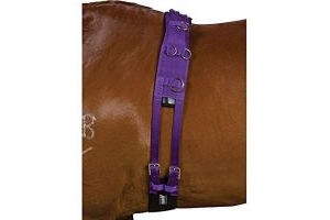 Kincade Deluxe Equigrip Lunge Roller (Pony) (Purple)