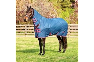 Saxon 600D Combo Neck Heavy 300g Turnout Rug - Dark Blue/Claret / 4'3