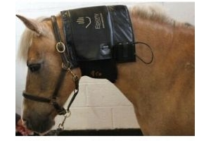 Epiony Horse Heat Pad. Brand New. For Horses And Humans.
