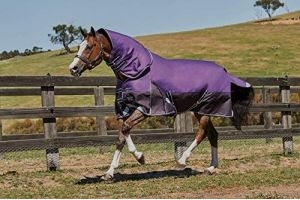 Weatherbeeta ComFiTec Plus Dynamic Detach-A-Neck Medium Lite Turnout Rug 5ft9 Purple Black