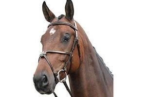 Kincade Leather Grackle Bridle II (Warmblood) (Brown)