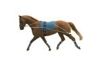 Kincade Lunging Training System - Pack of 1