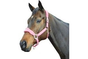 Roma Fleece Shaped Headcollar: Berry: Pony