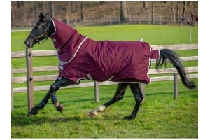 Horseware Amigo Hero Ripstop Plus 200g Medium Weight Detach-A-Neck Turnout Rug Fig/Silver
