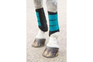 Shires Arma Neoprene Brushing Boots Teal Pony