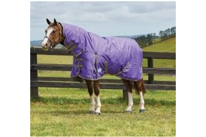 WeatherBeeta ComFiTec Classic 220g Medium Weight Combo Turnout Rug Violet/Grey