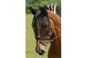 Equilibrium Net Relief Riding Mask-Black Small/ Pony by Equilibrium Products