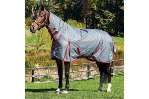 WeatherBeeta ComFiTec Plus Dynamic 100g Light-Medium Weight Combo Neck Turnout Rug Grey/Burgundy