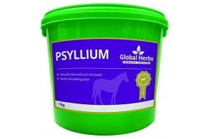 Psyllium by Global Herbs (1KG)