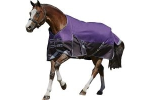 Weatherbeeta ComFiTec Plus Dynamic Medium Standard Neck Turnout Rug 4ft6 Purple/Black