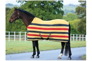 Horseware Rambo Deluxe Fleece pony sizes