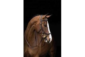 Horseware Rambo Micklem Multibridle Brown Cob