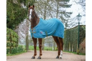 WeatherBeeta Waffle Cooler Standard Neck Rug Blue/Bright Green/Cerise : 5 ft 9