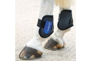 Shires Arma Fetlock Boots - Black/Royal Blue: Cob/Full