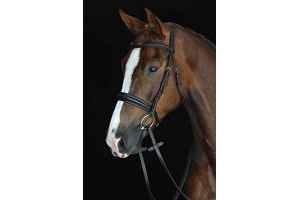 Collegiate Mono Crown Padded Raised Cavesson Bridle Brown Full