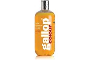 Carr & Day & Martin Gallop Colour Enhance Shampoo Chestnut 500ml