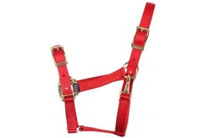 Shires Pro Adjustable Headcollar Red
