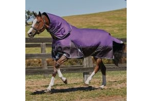 WeatherBeeta ComFiTec Plus Dynamic 220g Medium Weight Detach-A-Neck Turnout Rug Purple/Black
