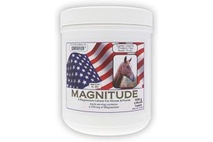 Equine America Magnitude Powder Calming Horse Supplements, 1 Kilogram