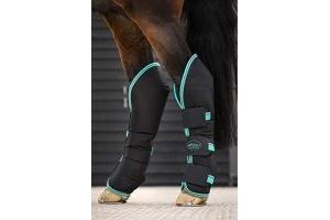 Horseware Amigo Travel Boots Cob Black/Teal/Dark Cherry
