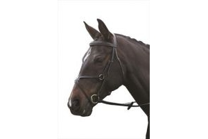 Kincade Grackle Bridle with Reins-Black Full