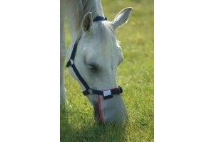 equilibrium Field Relief Muzzle Protector-Grey Large