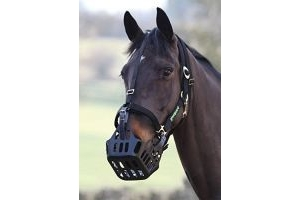 Shires Greenguard Muzzle - Black: Cob by Shires