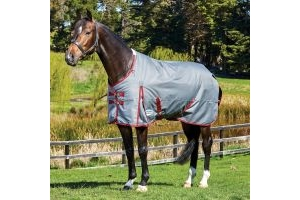 WeatherBeeta ComFiTec Plus Dynamic 220g Medium Weight Standard Neck Turnout Rug Grey/Burgundy