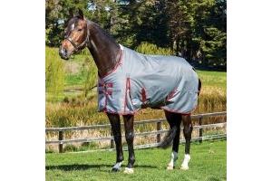 WeatherBeeta ComFiTec Plus Dynamic 220g Medium Weight Standard Neck Turnout Rug Grey/Burgundy