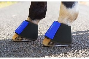 Shires Arma Neoprene Over Reach Boots - 1898, Royal Blue, Full