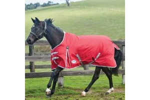 WeatherBeeta ComFiTec Classic 0g Lightweight Standard Neck Turnout Rug Red/Silver/Navy
