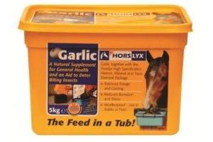 Horslyx - Garlic Horse Stable Lick 5 Kg Refills x 4 Bulk Buy