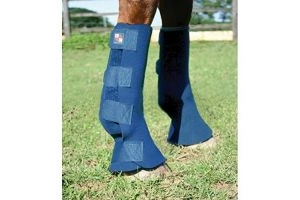 Equilibrium Equi-Chaps Hardy Horse Chaps (Medium) (Navy)