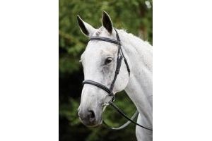 Kincade Raised Padded Fancy Stitch Cavesson Bridle-Cob Black