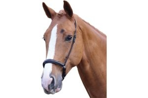 Blenheim Padded Drop Noseband Black