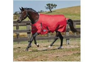 WeatherBeeta ComFiTec Classic 50g Lightweight Standard Neck Turnout Rug Red/Black
