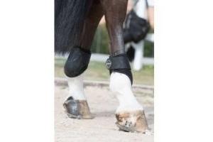 LeMieux Derby ProJump Fetlock Boots: Black: Medium