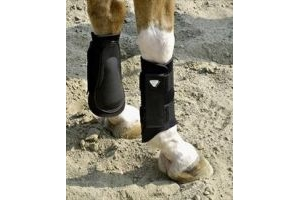 equilibrium Tri-Zone Brushing Boots-Black Small