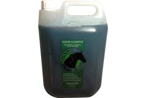CleanRound Medicated Shampoo 5 Litre: Cedarwood
