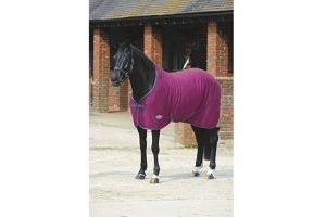 Weatherbeeta Standard Neck Jersey Cooler Rug II (4 ft 3) (Magenta/Grey)