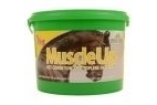 Global Herbs MuscleUP for Horses - 1kg Tub