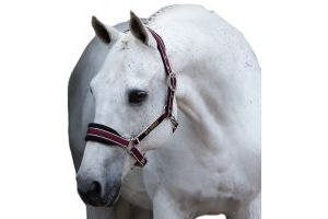 Horseware Rambo Padded Headcollar Black/Pomegranate/White