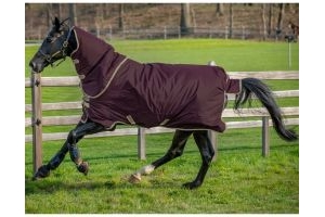 Horseware Amigo Hero Ripstop Plus Lite 0g Lightweight Detach-A-Neck Turnout Rug Fig/Navy/Tan